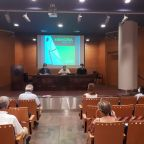 2020_09_17_Asamblea COMCADIZ 1