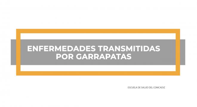 ENFERMEDADES GARRAPATAS